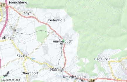 Stadtplan Ammerbuch