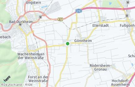 Stadtplan Friedelsheim