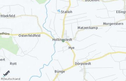 Stadtplan Hollingstedt (Treene)